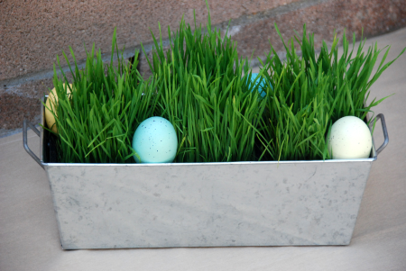 egg hunt centerpiece easter decoration entertaining ideas wheatgrass galvanized metal planter